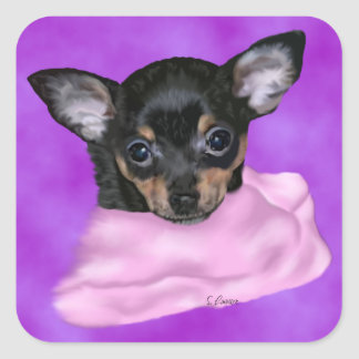 Black and Tan Chihuahua Puppy Square Sticker