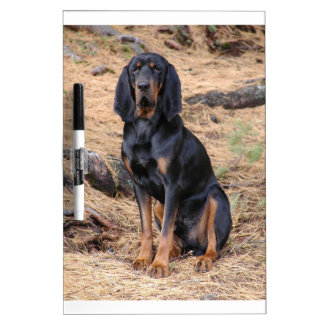Black and Tan Coonhound Dog Dry Erase Boards