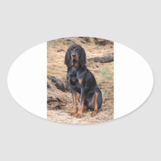 Black and Tan Coonhound Dog Oval Sticker