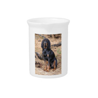 Black and Tan Coonhound Dog Pitcher