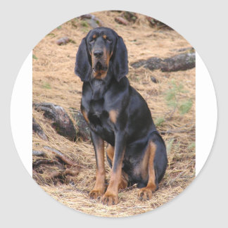 Black and Tan Coonhound Dog Round Sticker