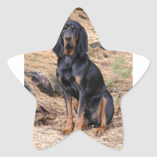 Black and Tan Coonhound Dog Star Sticker