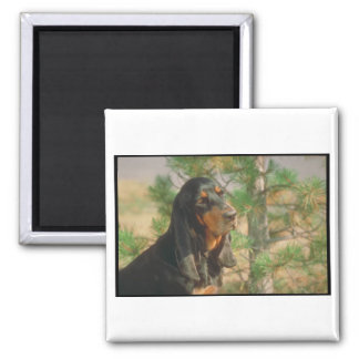 Black and Tan Coonhound Fridge Magnets