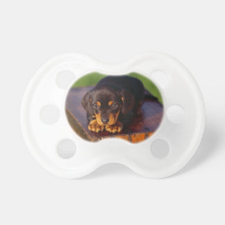 Black And Tan Coonhound Puppy Baby Pacifier