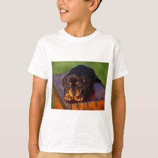 Black And Tan Coonhound Puppy T-Shirt