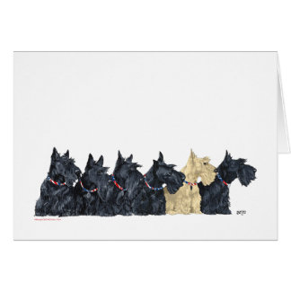 Black and Wheaten Scottish Terriers Card