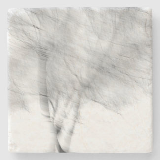 Black And White Abstract Tree Photograph Stone Coaster