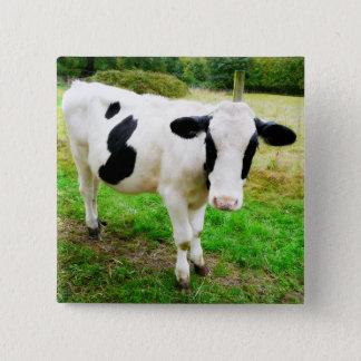 Black and White Apostrophe S Cow 2 Inch Square Button