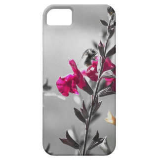 Black and White Bee iPhone 5 Case