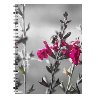 Black and White Bee Spiral Notebook
