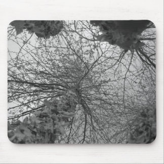Black and White Birch Tree Mouse Pad