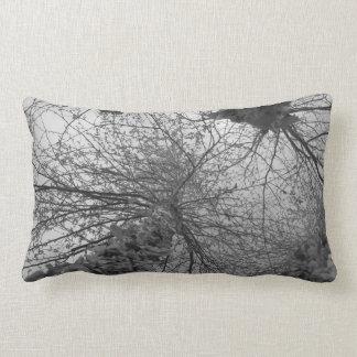 Black and White Birch Tree Pillows