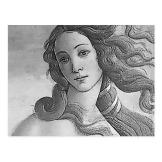 Black and White - Birh of Venus, Goddess Postcard