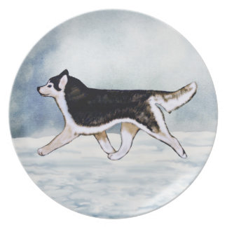 Black and White Brown Eyes Siberian Husky Plate