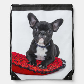 Black and White Bulldog Terrier on Red Pillow Drawstring Bag