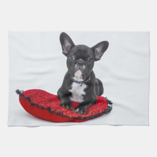 Black and White Bulldog Terrier on Red Pillow Kitchen Towel