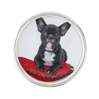 Black and White Bulldog Terrier on Red Pillow Lapel Pin