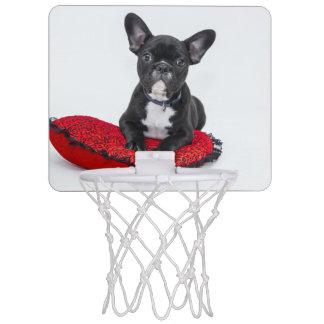 Black and White Bulldog Terrier on Red Pillow Mini Basketball Hoop