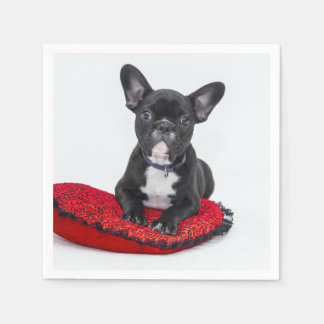 Black and White Bulldog Terrier on Red Pillow Paper Napkins