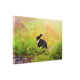 Black And White Bunny Rabbit In Colorful Foliage Canvas Print