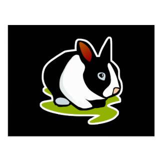 black and white bunny rabbit postcard