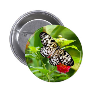 Black and white butterfly in garden print 2 inch round button