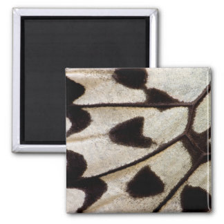 Black and white butterfly wing magnet