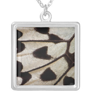 Black and white butterfly wing silver plated necklace
