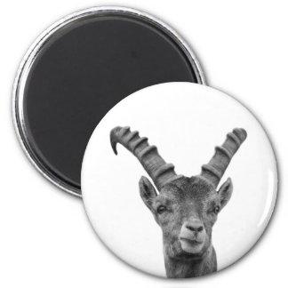 Black and white capricorn animal photo magnet