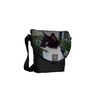 Black and White Cat Bag/purse Commuter Bag