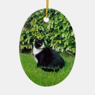 Black and White Cat Ceramic Ornament
