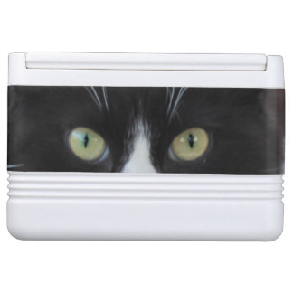 Black and white cat igloo can cooler
