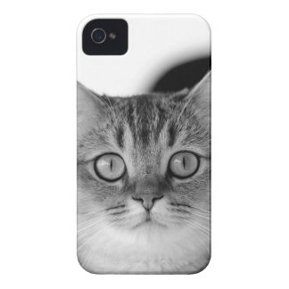 Black and white cat looking straight at you Case-Mate iPhone 4 case