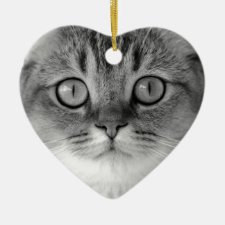 Black and white cat looking straight at you ceramic heart ornament