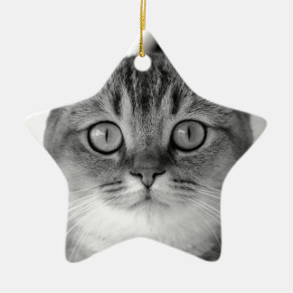Black and white cat looking straight at you ceramic star ornament