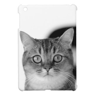 Black and white cat looking straight at you cover for the iPad mini