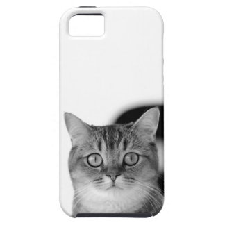 Black and white cat looking straight at you iPhone 5 cover