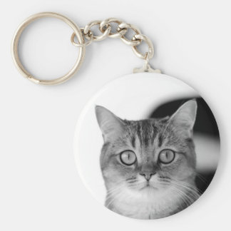 Black and white cat looking straight at you keychain