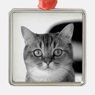 Black and white cat looking straight at you metal ornament