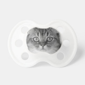 Black and white cat looking straight at you pacifier