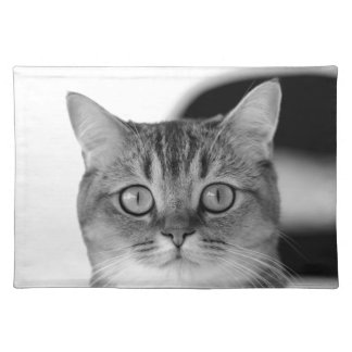 Black and white cat looking straight at you placemat