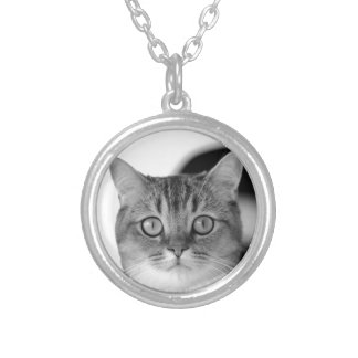 Black and white cat looking straight at you silver plated necklace