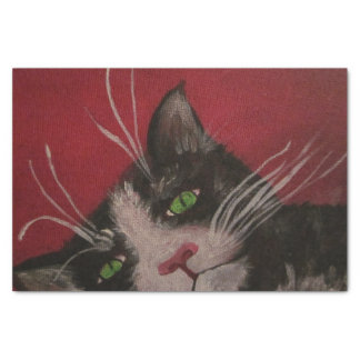 black and white cat tissue paper