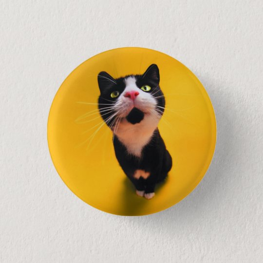 Black and white cat-tuxedo cat-pet kitten-pet cat 1 inch round button