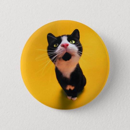 Black and white cat-tuxedo cat-pet kitten-pet cat 2 inch round button