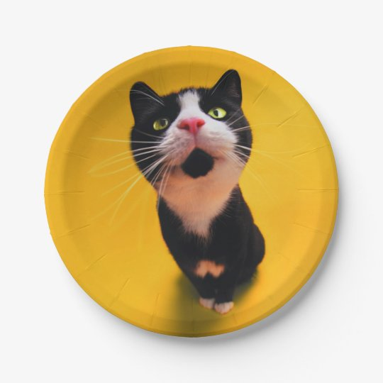 Black and white cat-tuxedo cat-pet kitten-pet cat 7 inch paper plate