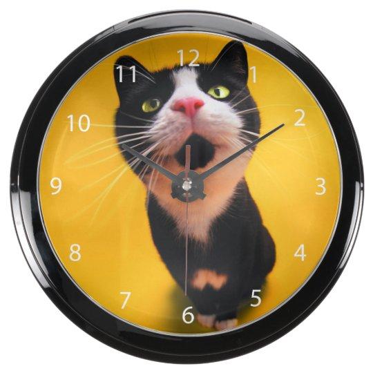 Black and white cat-tuxedo cat-pet kitten-pet cat aqua clocks