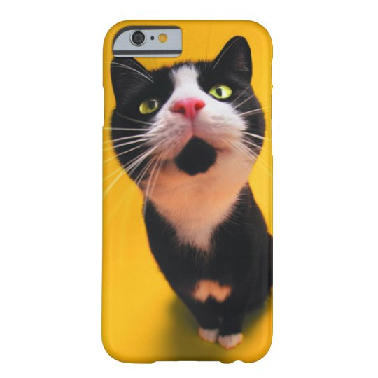 Black and white cat-tuxedo cat-pet kitten-pet cat barely there iPhone 6 case