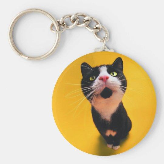 Black and white cat-tuxedo cat-pet kitten-pet cat basic round button keychain