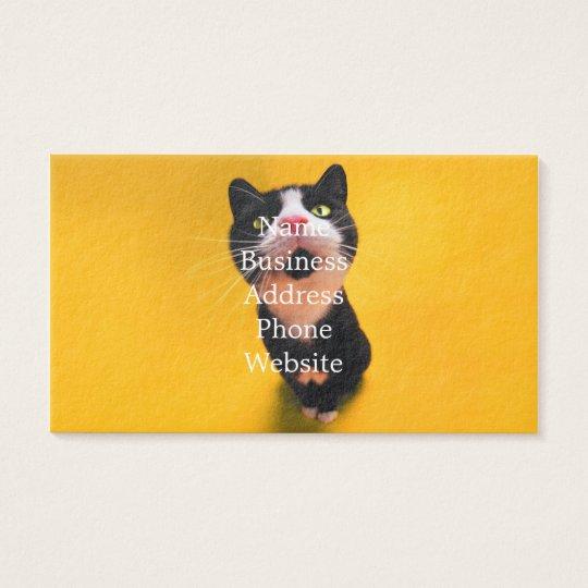 Black and white cat-tuxedo cat-pet kitten-pet cat business card